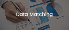 veri eşleştirme